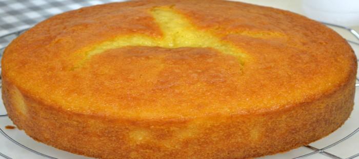 Homemade sponge yogurt cake